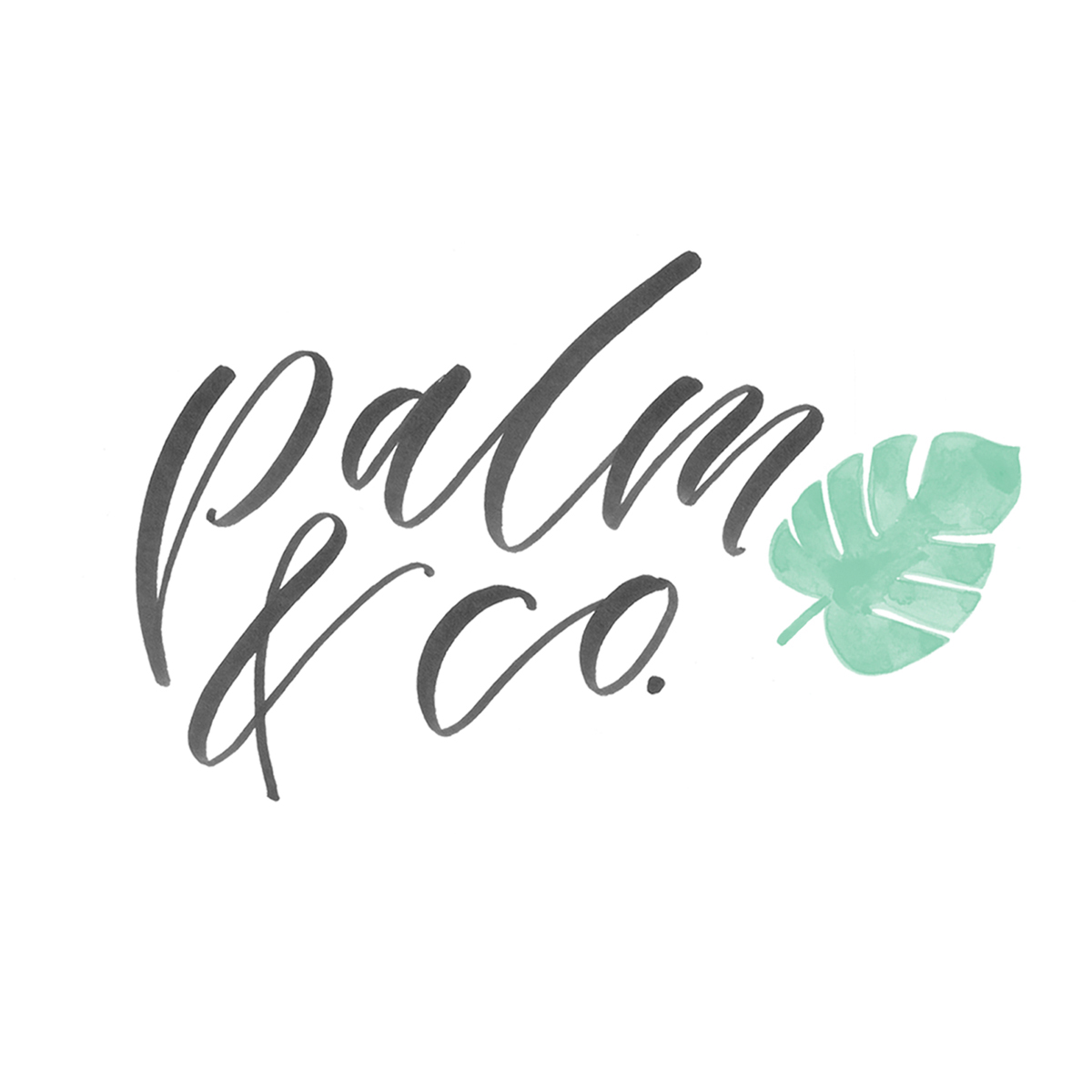 Palm & Co. hand-lettered logo
